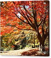 Just Around The Bend Acrylic Print