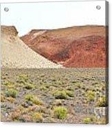Just Desert Acrylic Print