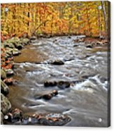 Just Going With The Flow Acrylic Print