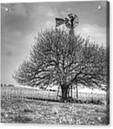 Just Plain Kansas Acrylic Print by JC Findley
