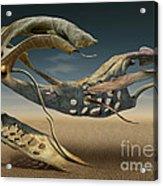 K214 Acrylic Print by Radoslav Penchev