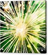 Kaboom Acrylic Print by Suzanne Luft