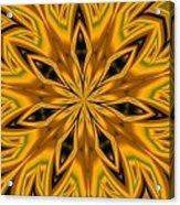 Kaleidoscope 14 Acrylic Print