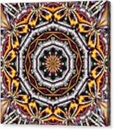 Kaleidoscope 41 Acrylic Print
