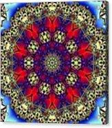 Kaleidoscope 51 Acrylic Print