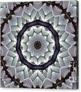 Kaleidoscope 63 Acrylic Print