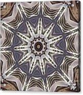 Kaleidoscope 64 Acrylic Print