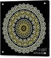 Kaleidoscope Ernst Haeckl Sea Life Series Steampunk Feel Acrylic Print by Amy Cicconi