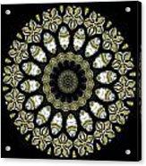Kaleidoscope Ernst Haeckl Sea Life Series Steampunk Feel Triptyc Acrylic Print
