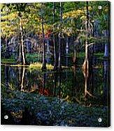 Kaleidoscope Light Acrylic Print