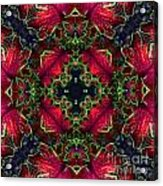 Kaleidoscope Made From An Image Of A Coleus Plant Acrylic Print