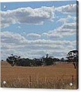 Kalgoorlie Countryside Acrylic Print