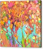 Kangaroo Flower In Spring Bubbles Acrylic Print