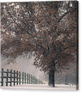 Kansas Snowstorm - Tree And Fence Acrylic Print