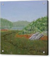 Kantola Swamp Acrylic Print