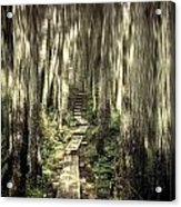 Keep On The Path Acrylic Print