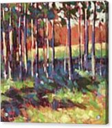 Kelly's Trees Acrylic Print