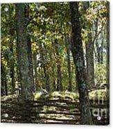 Kennesaw Battlefield Mountain Acrylic Print