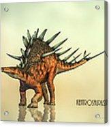 Kentrosaurus Dinosaur Acrylic Print by Bob Orsillo
