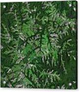 Kentucky Landscape Acrylic Print
