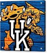 Kentucky Wildcats Barn Door Acrylic Print
