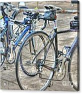 Kestrel And Specialized--ironman Rides Acrylic Print by David Bearden