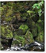 Ketchikan Riverbank Acrylic Print