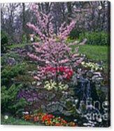 Keukenhof Color Acrylic Print