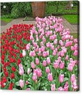 Keukenhof Gardens 1 Acrylic Print