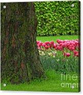 Keukenhof Gardens 23 Acrylic Print