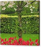 Keukenhof Gardens 34 Acrylic Print