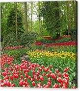 Keukenhof Gardens 53 Acrylic Print