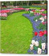 Keukenhof Gardens 54 Acrylic Print