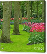 Keukenhof Gardens 60 Acrylic Print