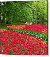 Keukenhof Gardens 88 Acrylic Print