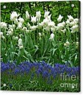 Keukenhof Gardens 92 Acrylic Print
