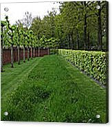 Keukenhof Gardens Panoramic 10 Acrylic Print
