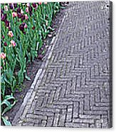 Keukenhof Gardens Panoramic 24 Acrylic Print