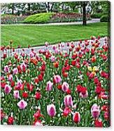 Keukenhof Gardens Panoramic 49 Acrylic Print