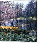 Keukenhof Spring Acrylic Print
