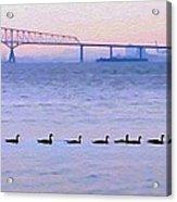 Key Bridge And Waterfowl Acrylic Print