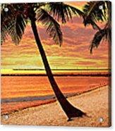 Key West Beach Acrylic Print by Marty Koch