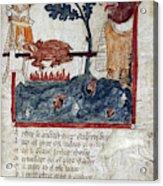King Arthur And Giant Acrylic Print