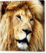King Ludwig Xviiii Acrylic Print