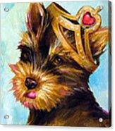 King Of Hearts 3 Acrylic Print