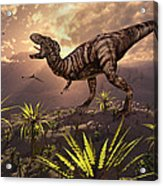 King Of The Dinosaurs.. A T.rex Acrylic Print