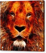 King Of The Jungle Acrylic Print