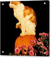 King Of The Pumpkin Acrylic Print