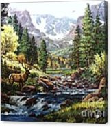 King Of The Valley Acrylic Print by W  Scott Fenton