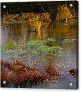 Kintbury Newt Ponds Acrylic Print